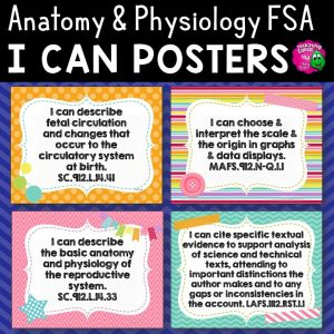 Teaching Ideas 4U - Amy Mezni - I Can Posters Anatomy & Physiology Florida Standards